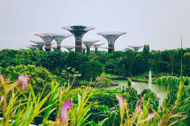 Voyage à Singapour